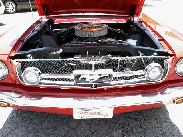 1965 Ford MUSTANG  289 V8  FASTBACK 2+2 San Antonio, Texas 29