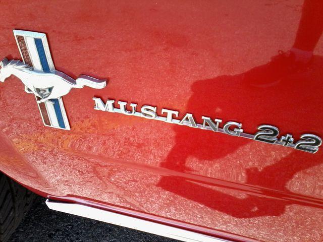 1965 Ford MUSTANG  289 V8  FASTBACK 2+2 San Antonio, Texas 10