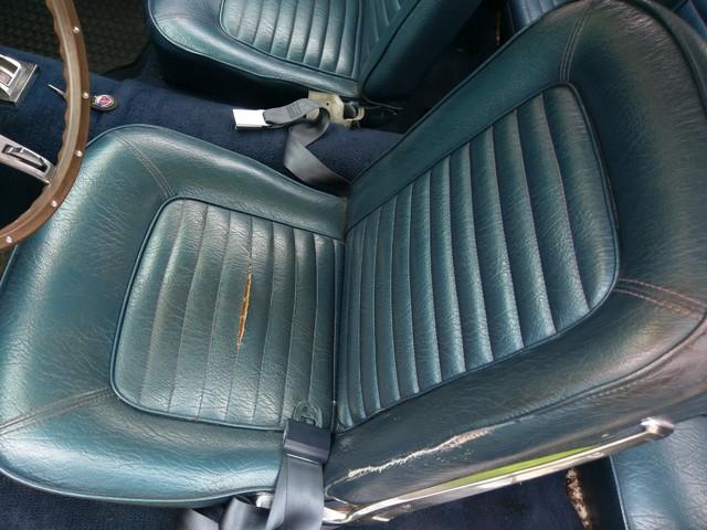 1965 Ford Mustang Batavia, Illinois 12