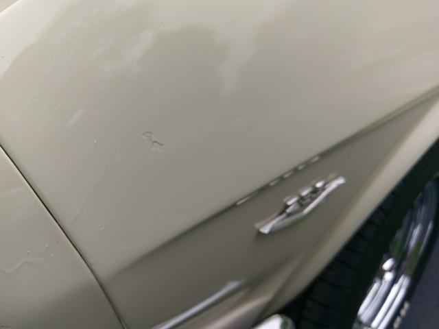 1965 Ford Mustang Batavia, Illinois 38