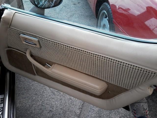1979 Chevrolet CORVETTE San Antonio, Texas 13
