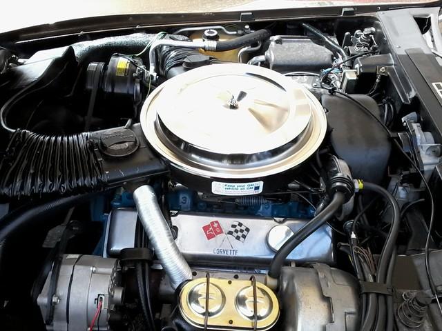 1979 Chevrolet CORVETTE San Antonio, Texas 29