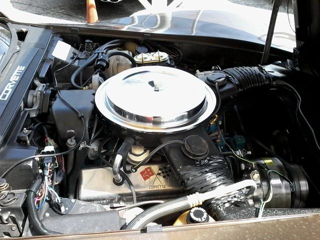 1979 Chevrolet CORVETTE San Antonio, Texas 30