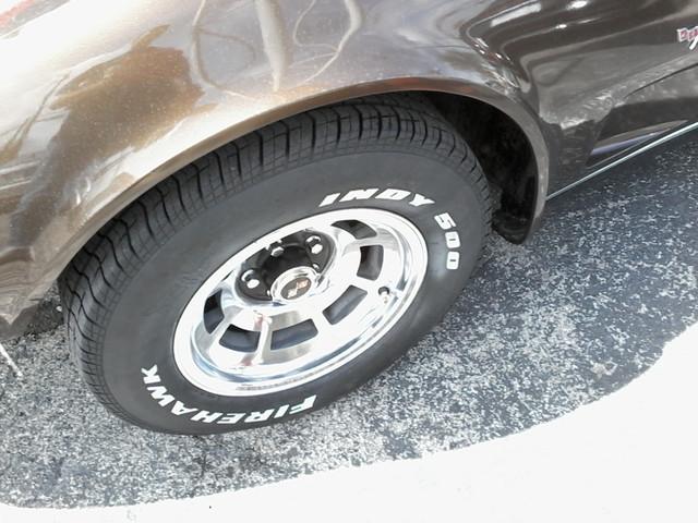 1979 Chevrolet CORVETTE San Antonio, Texas 35