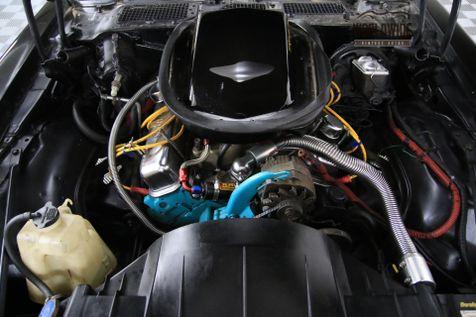 1979 Pontiac TRANS AM FIREBIRD 6.6L V8 AUTO DUAL EXHAUST PS PB | Denver, CO | WORLDWIDE VINTAGE AUTOS in Denver, CO