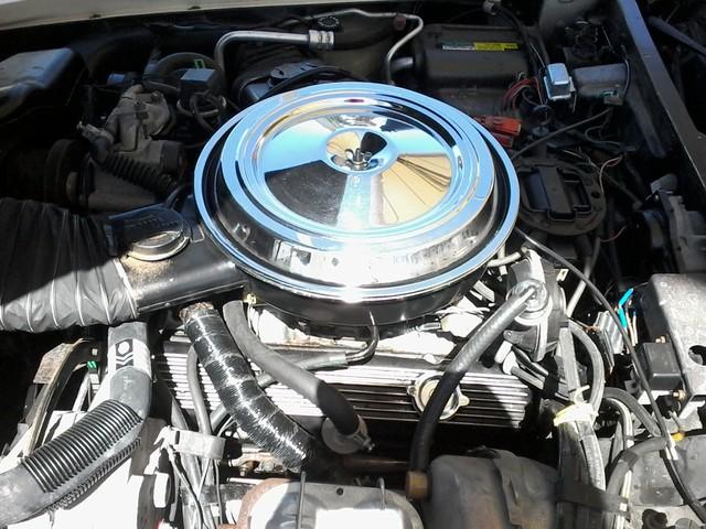 1981 Chevrolet Corvette San Antonio, Texas 39