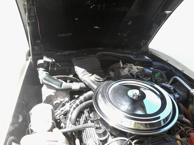 1981 Chevrolet Corvette San Antonio, Texas 40