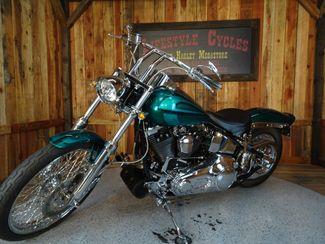 1992 Harley-Davidson Softail® Anaheim, California 15