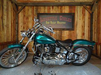 1992 Harley-Davidson Softail® Anaheim, California 1