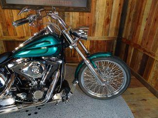 1992 Harley-Davidson Softail® Anaheim, California 9