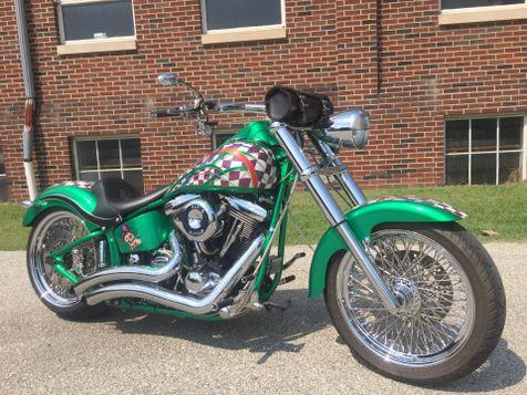 1994 Harley-Davidson FLSTC Heritage Softail in Oaks
