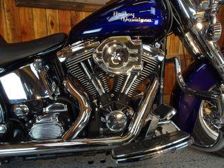 1997 Harley-Davidson Softail® Anaheim, California 5