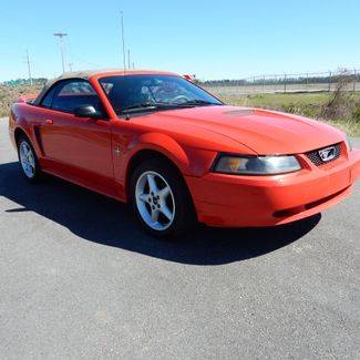 2000 Ford Mustang Myrtle Beach, SC 6