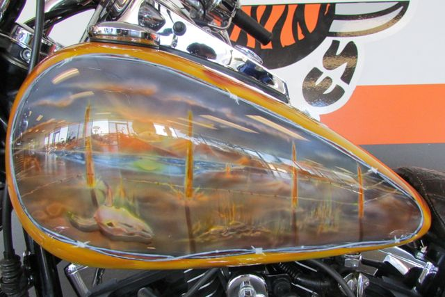 2000 Harley Davidson SOFTAIL FAT BOY FLSTF FAT BOY CUSTOM PAINT LOADED Arlington, Texas 41