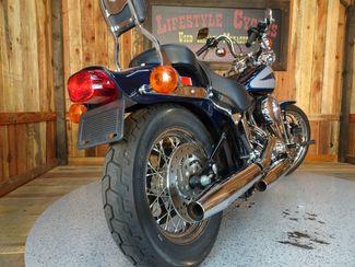 2001 Harley-Davidson Softail® Springer Anaheim, California 14