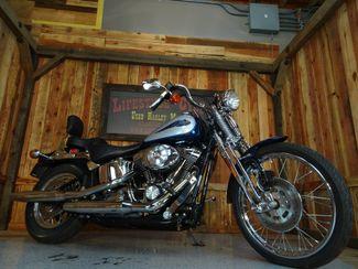 2001 Harley-Davidson Softail® Springer Anaheim, California 22