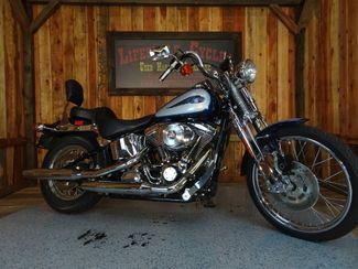 2001 Harley-Davidson Softail® Springer Anaheim, California 19