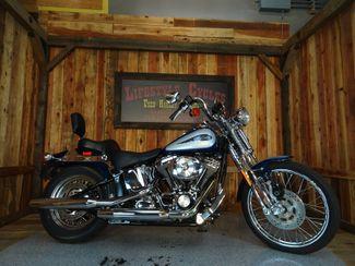 2001 Harley-Davidson Softail® Springer Anaheim, California 13