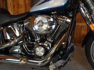 2001 Harley-Davidson Softail® Springer Anaheim, California 7