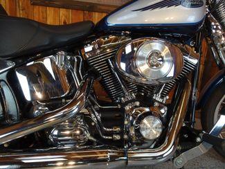 2001 Harley-Davidson Softail® Springer Anaheim, California 6