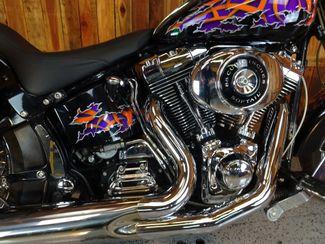 2001 Harley-Davidson Softail® Heritage Anaheim, California 6