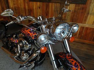 2001 Harley-Davidson Softail® Heritage Anaheim, California 29