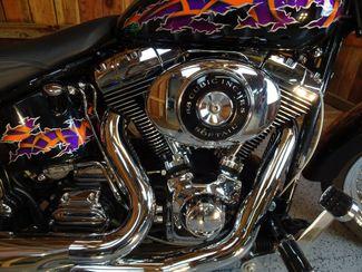 2001 Harley-Davidson Softail® Heritage Anaheim, California 34