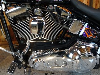2001 Harley-Davidson Softail® Heritage Anaheim, California 5