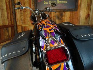 2001 Harley-Davidson Softail® Heritage Anaheim, California 16