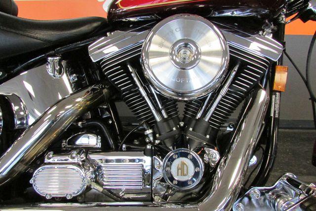 2001 Harley - Davidson SOFTAIL Arlington, Texas 24