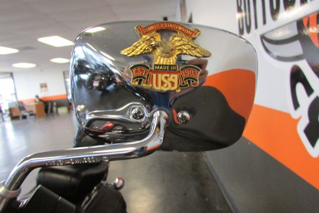 2001 Harley - Davidson SOFTAIL Arlington, Texas 9
