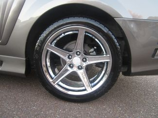 2002 Ford Mustang Saleen GT Premium Batesville, Mississippi 14