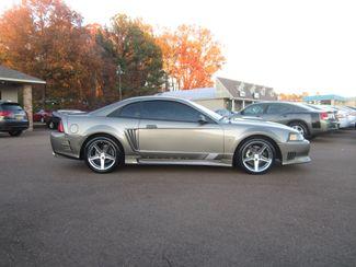 2002 Ford Mustang Saleen GT Premium Batesville, Mississippi 3