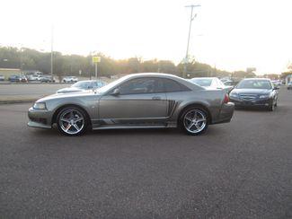 2002 Ford Mustang Saleen GT Premium Batesville, Mississippi 2