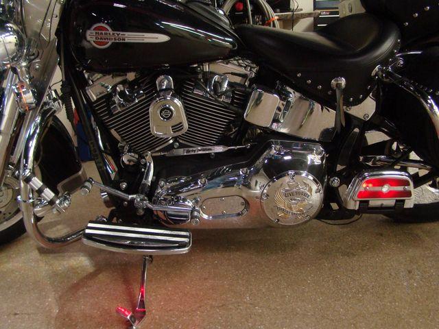 2002 Harley Davidson HERITAGE SOFTAIL Batavia, Illinois 12