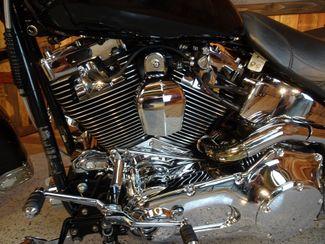 2002 Harley-Davidson Softail® Anaheim, California 5
