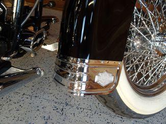2002 Harley-Davidson Softail® Anaheim, California 13