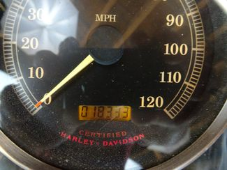 2002 Harley-Davidson Softail® Fat Boy Anaheim, California 33