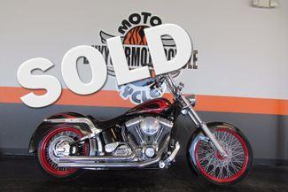 2002 Harley-Davidson SOFTAIL  CUSTOM FXSTC Arlington, Texas