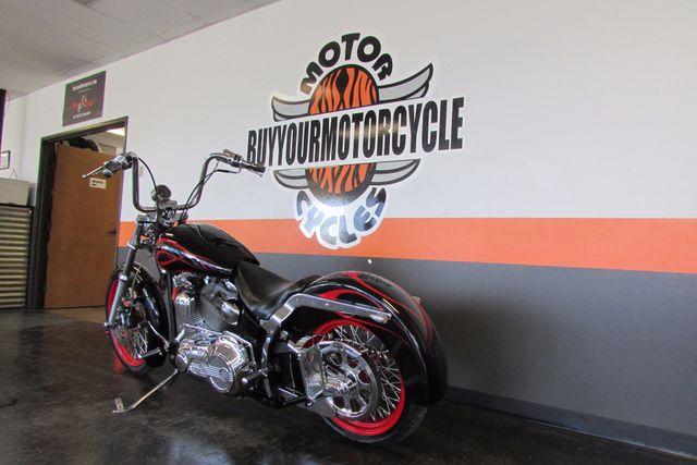 2002 Harley-Davidson SOFTAIL  CUSTOM FXSTC Arlington, Texas 25