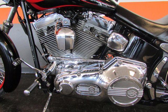 2002 Harley-Davidson SOFTAIL  CUSTOM FXSTC Arlington, Texas 28
