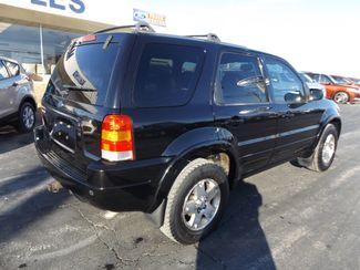 2003 Ford Escape Limited Warsaw, Missouri 10