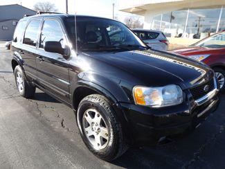 2003 Ford Escape Limited Warsaw, Missouri 11
