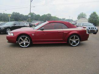 2003 Ford Mustang GT Premium Batesville, Mississippi 1