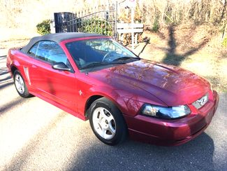 2003 Ford-1 Owner Car!! Mustang--BUY HERE PAY HERE!! CARMARTSOUTH.COM Base-CARMARTSOUTH.COM Knoxville, Tennessee 2