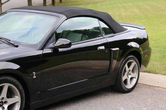 2003 Ford Mustang SVT Cobra Convertible. Mooresville, North Carolina 48