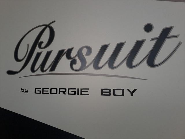 2004 Georgie Boy Pursuit  RV 2970 DS San Antonio, Texas 24