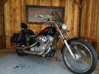 2004 Harley-Davidson Softail® Springer® Softail® Anaheim, California 8