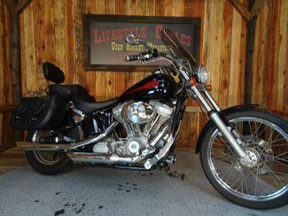 2004 Harley-Davidson Softail® Springer® Softail® Anaheim, California 2