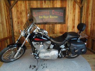 2004 Harley-Davidson Softail® Springer® Softail® Anaheim, California 9